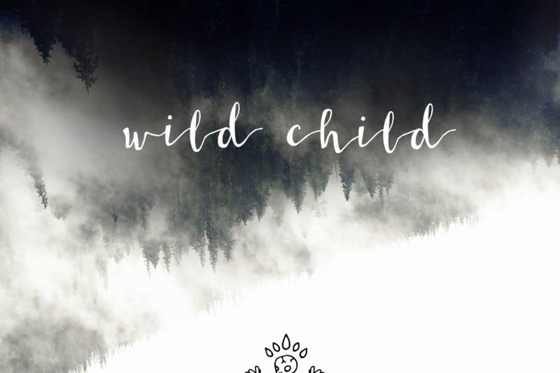 Download Wildera Regular font (typeface)