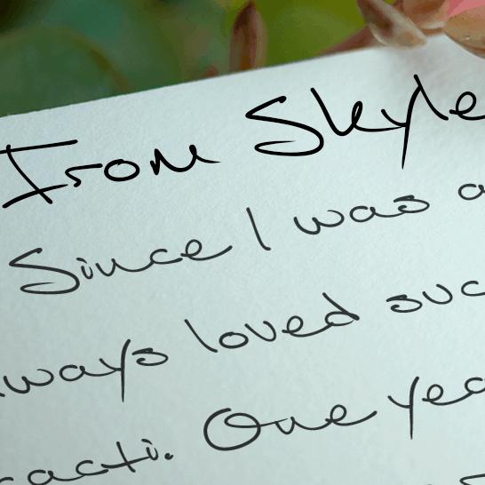 Download From Skyler font (typeface)