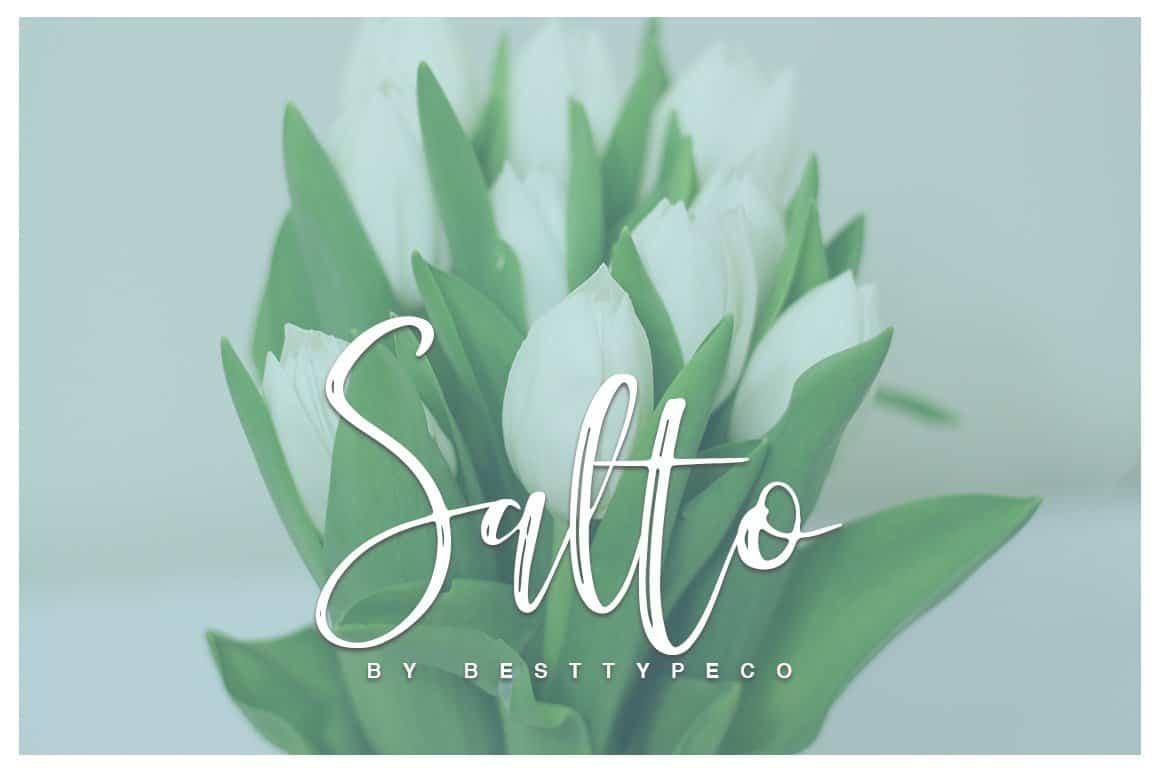 Download Salto font (typeface)