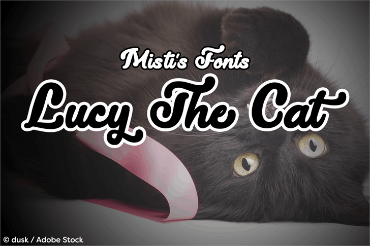 Download Lucy the Cat font (typeface)