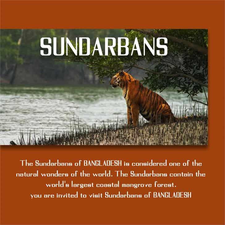 Sundarbans шрифт скачать бесплатно