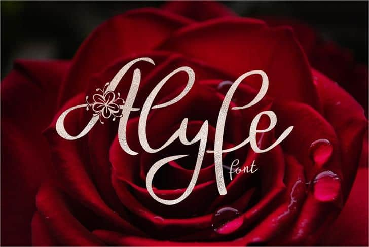 Download Alyfe font (typeface)