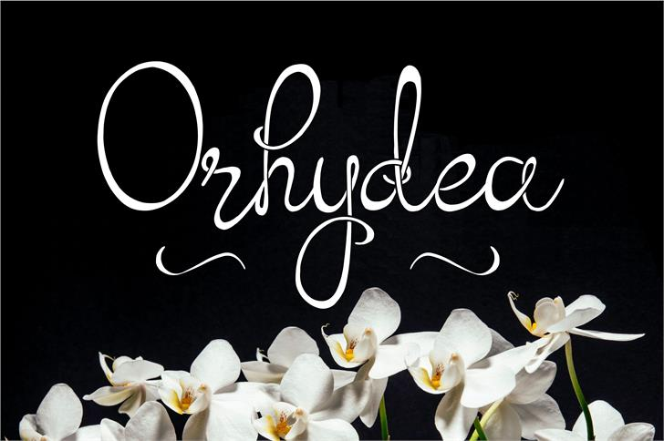 Download Orhydea font (typeface)