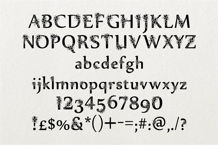 Sylabus шрифт скачать бесплатно