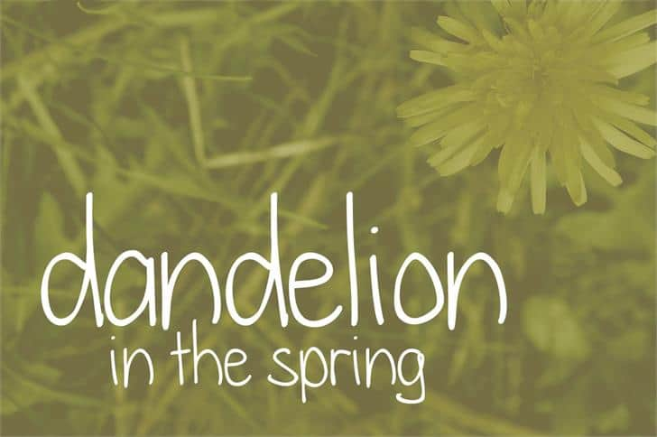 Download Dandelion in the spring font (typeface)