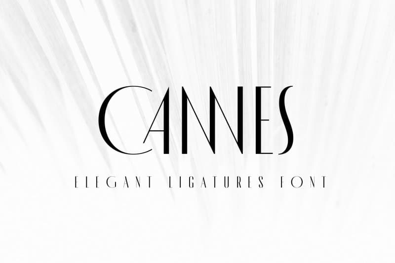 Download MADE Cannes font (typeface)