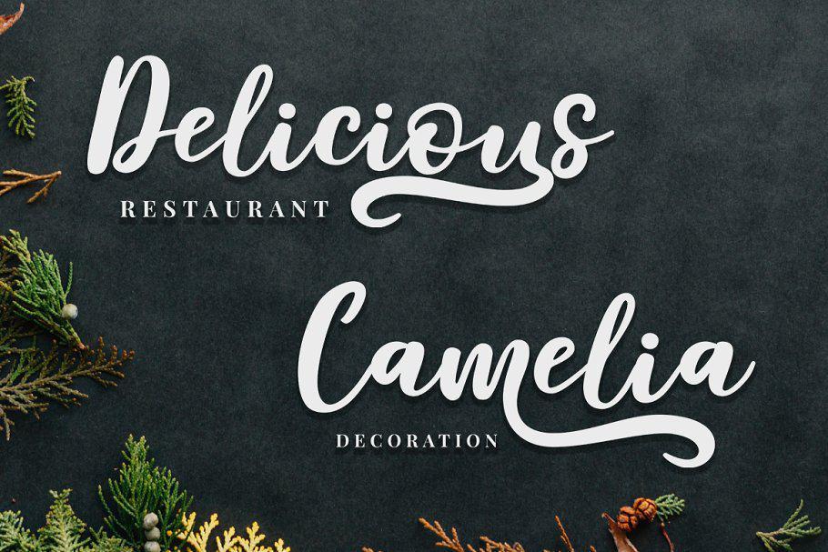 Download Delaras font (typeface)