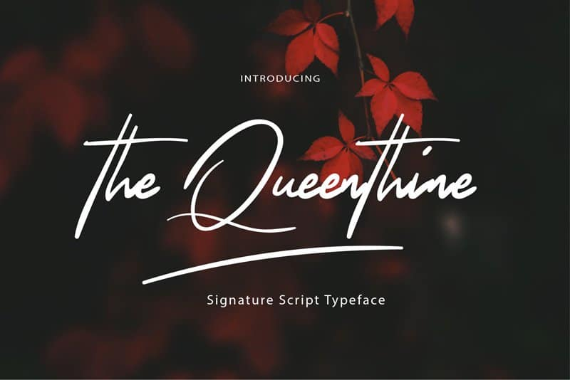 Download The Queenthine font (typeface)