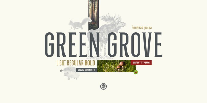 Download Green Grove font (typeface)