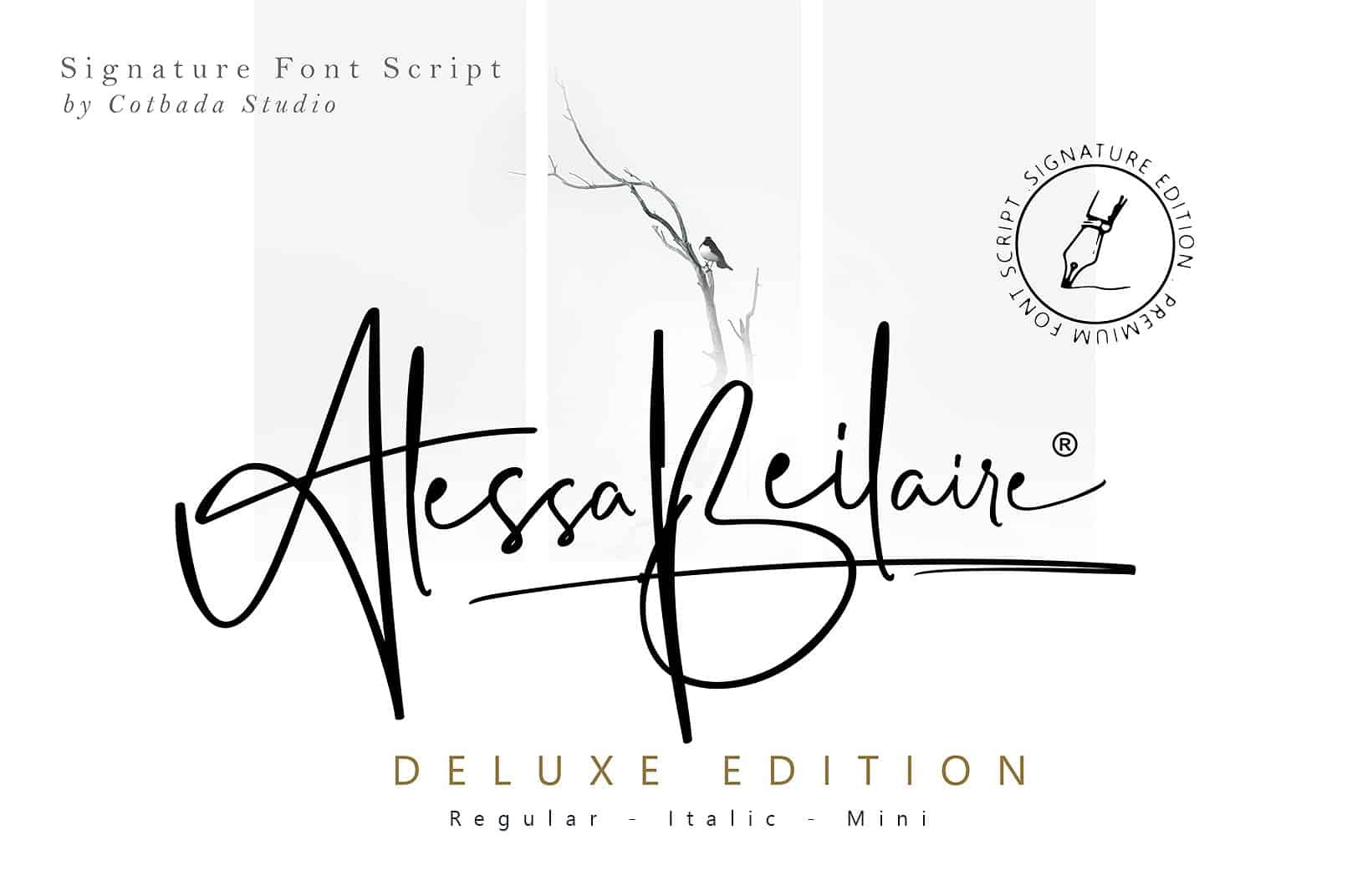 Download Alessa Beilaire font (typeface)