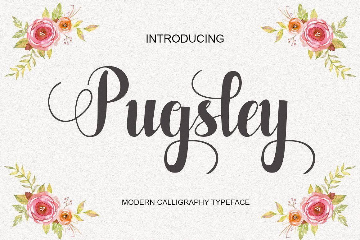 Download Pugsley font (typeface)