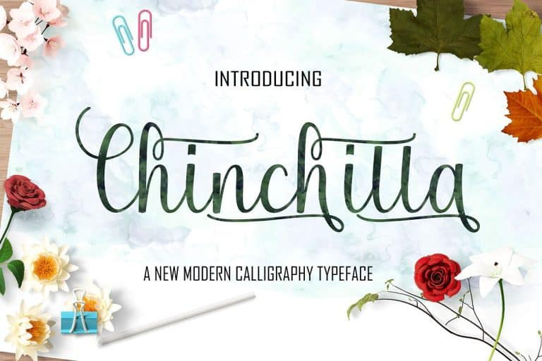 Download Chinchilla font (typeface)