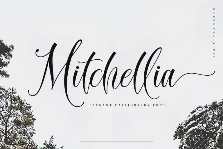 Download Mitchellia font (typeface)