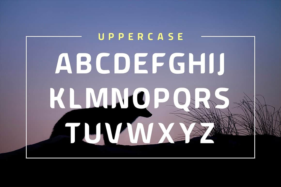 Download American Fox font (typeface)