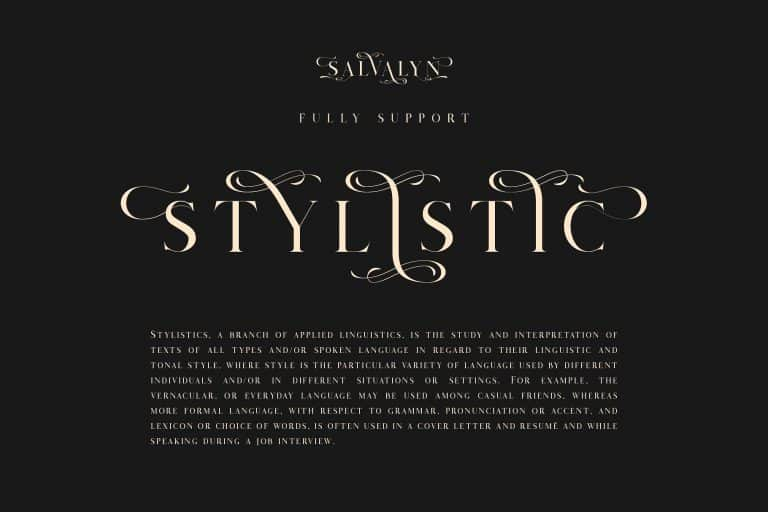 Download Salvalyn font (typeface)