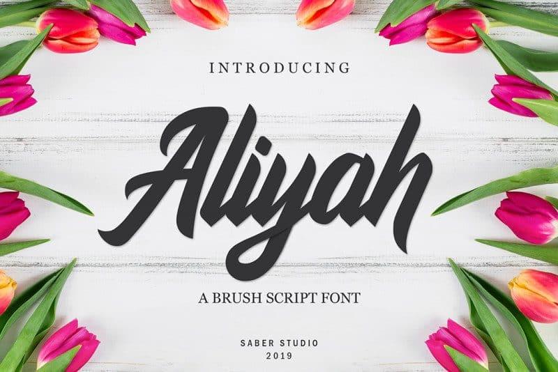 Download Aliyah font (typeface)