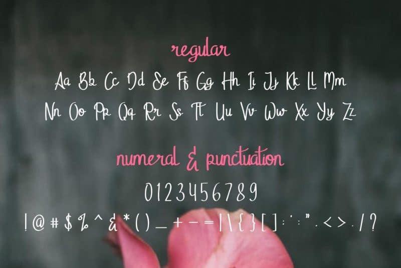 Download Stella Alpina font (typeface)
