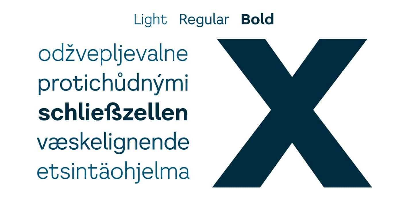Download Literal font (typeface)