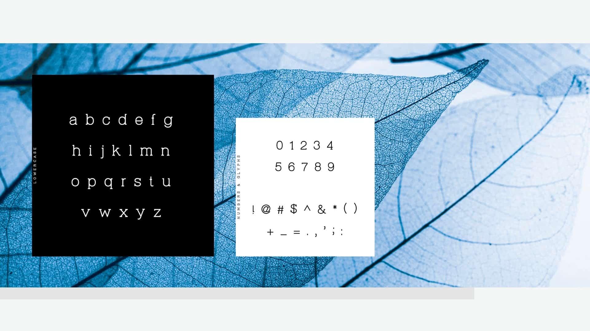 Download Virtuous Slab font (typeface)