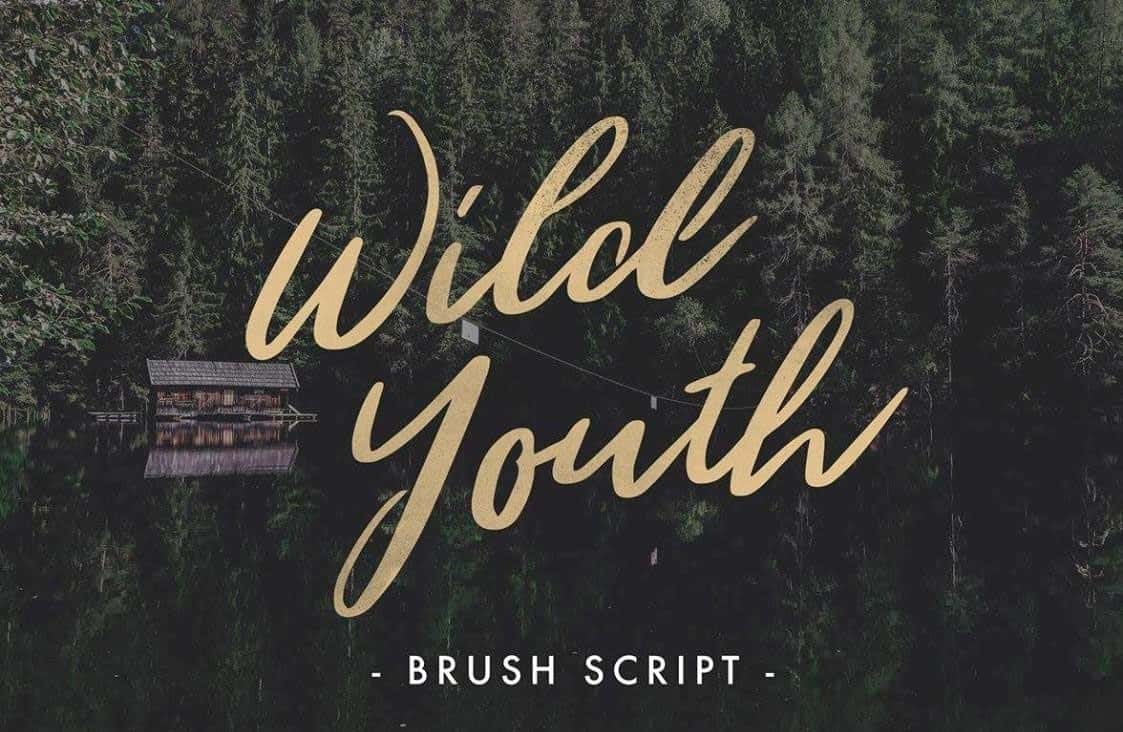 Download Wild Youth Regular font (typeface)