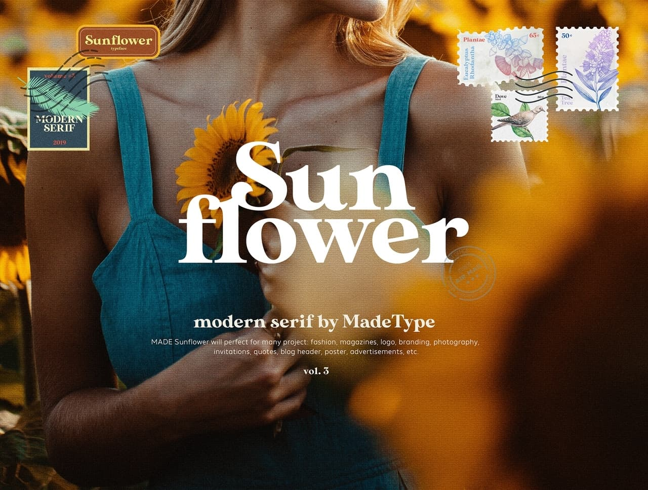Download Sunflower font (typeface)