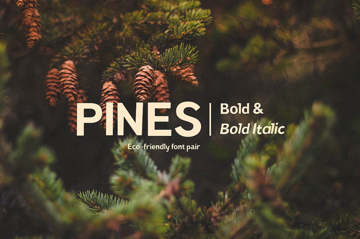 Download Coats Thin & Coats Thin Italic font (typeface)