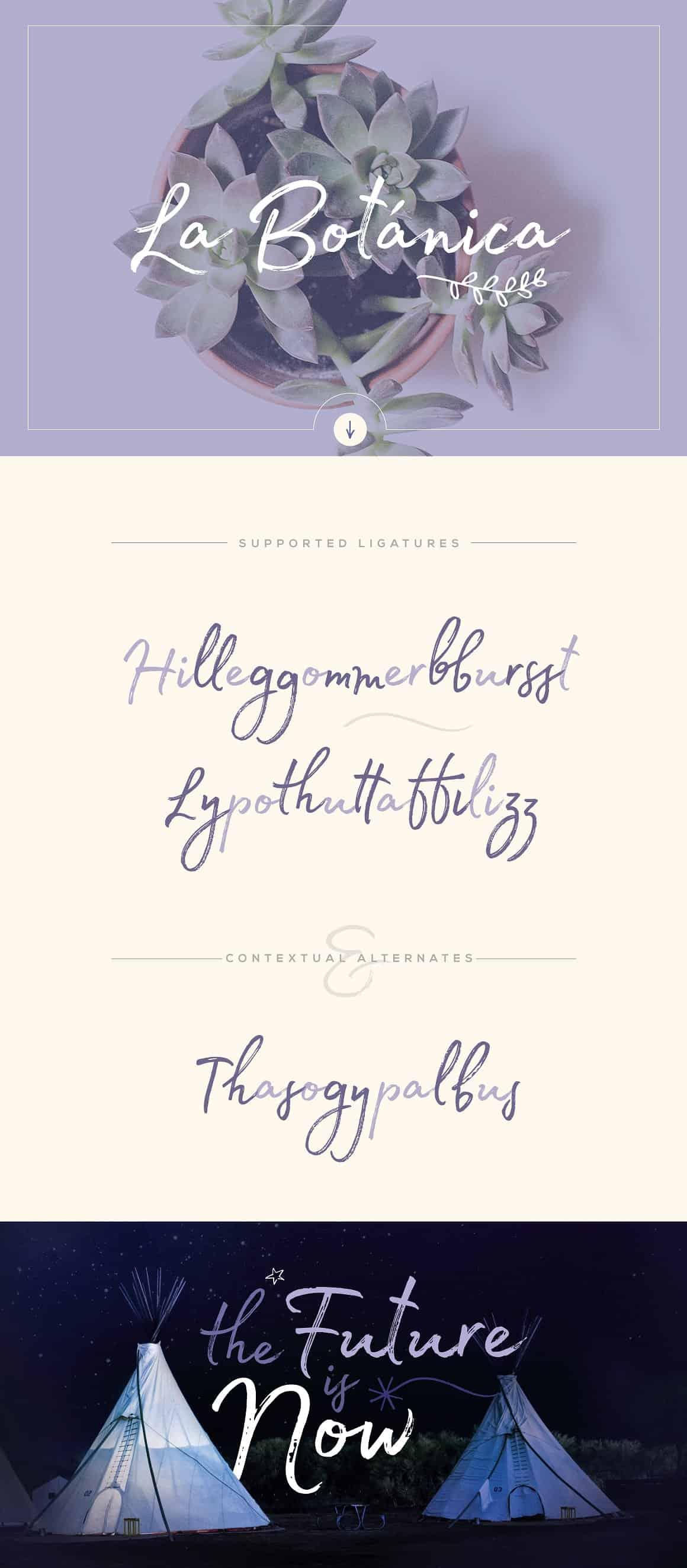 Download Madelyn Script font (typeface)