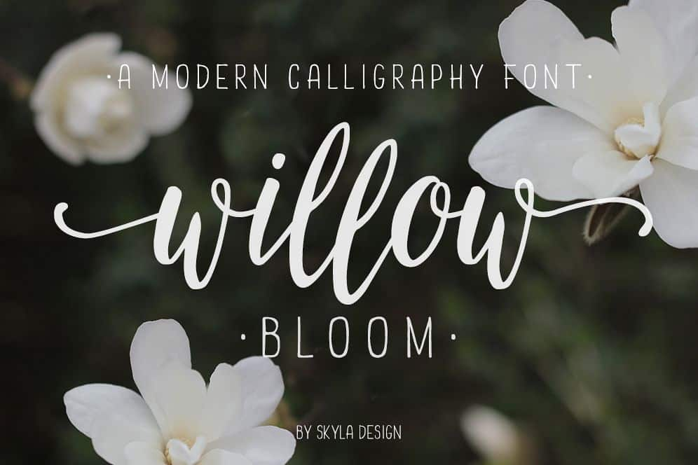 Download Willow Bloom font (typeface)