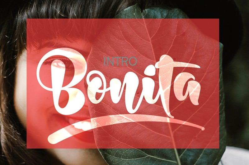 Download Bonita font (typeface)