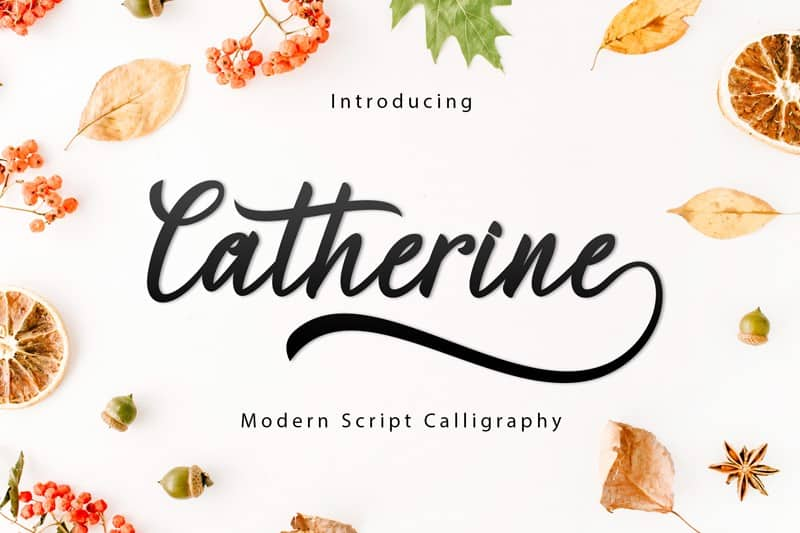 Download Catherine font (typeface)
