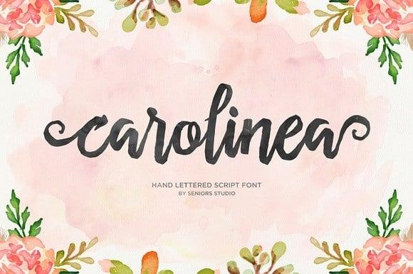 Download Carolinea Typeface font (typeface)