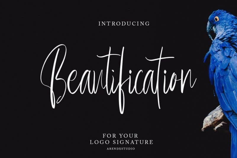 Download Beautification font (typeface)