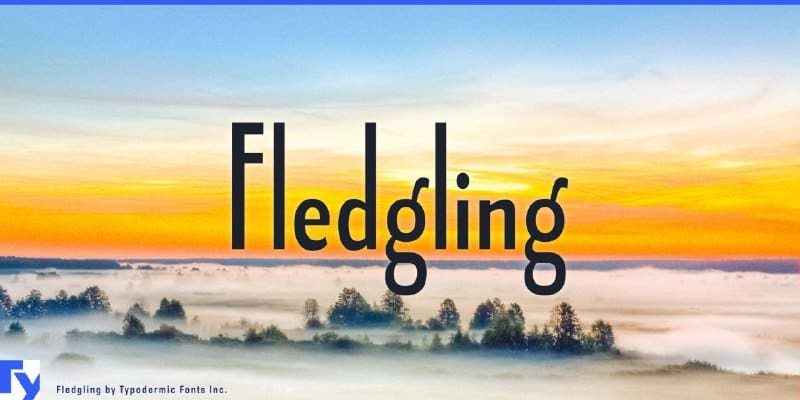Download Fledgling font (typeface)