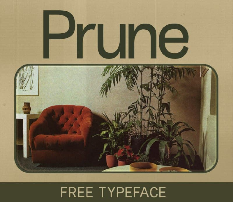 Download Prune font (typeface)