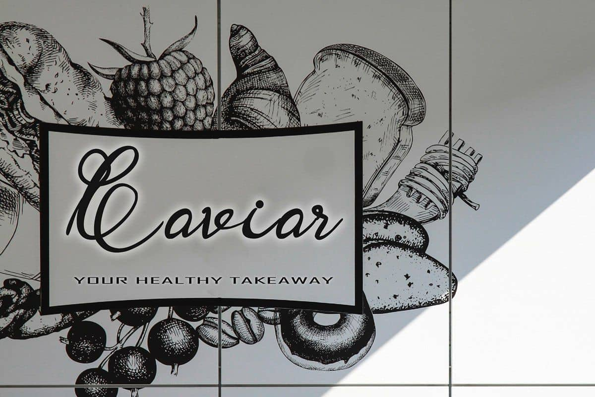 Download Garbera Flower font (typeface)
