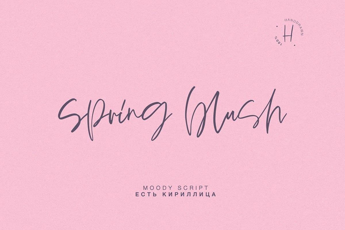 Download Spring Blush font (typeface)